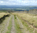 Comming down the kings Highway. looking towards Whalley nab and the Bowland fells.